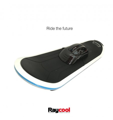 Hoverboard Skateboard Raycool E1